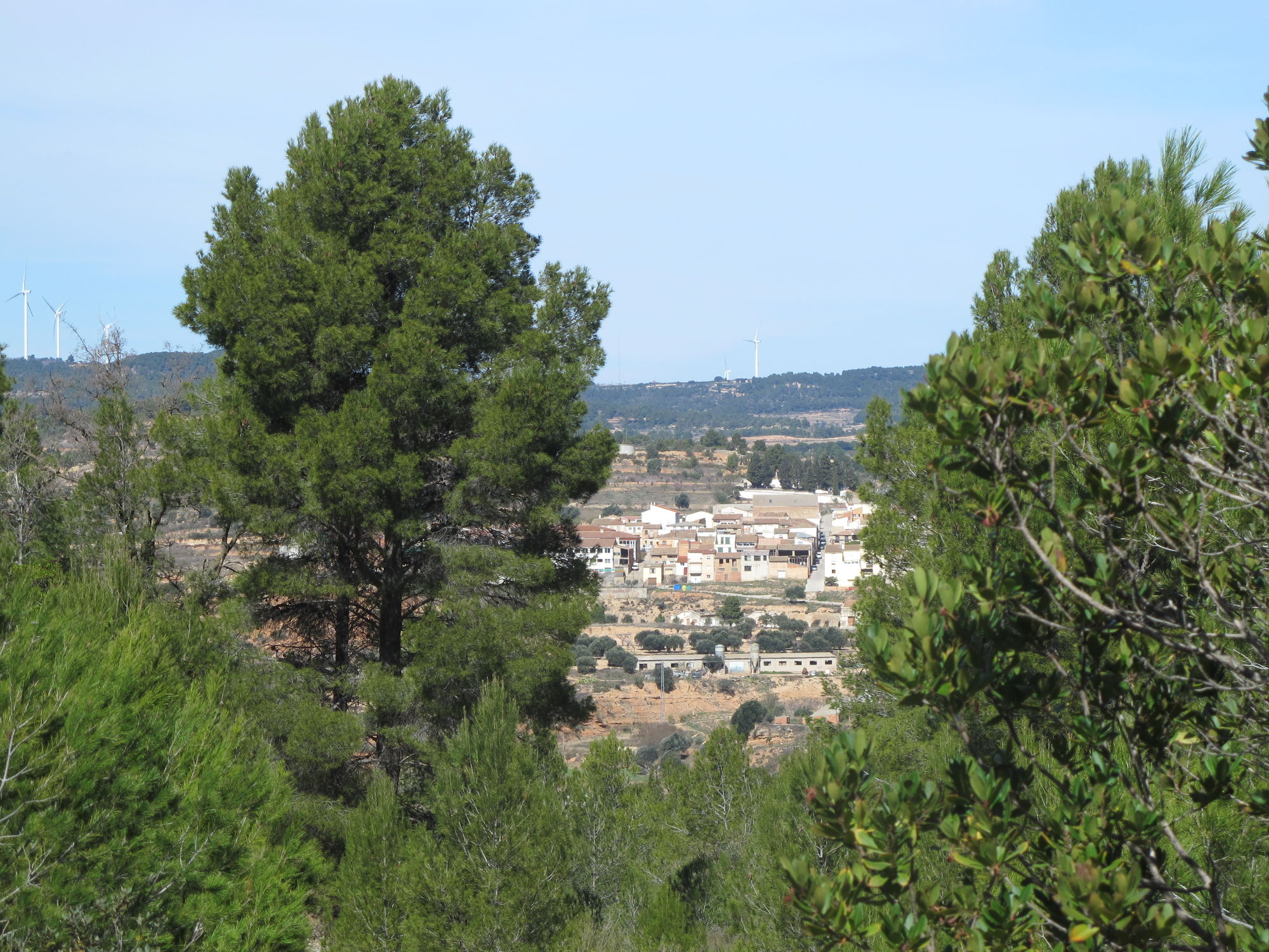 Land, For sale, Dellà el riu, Listing ID 1000, Bot, Tarragona, Spain, 43785,