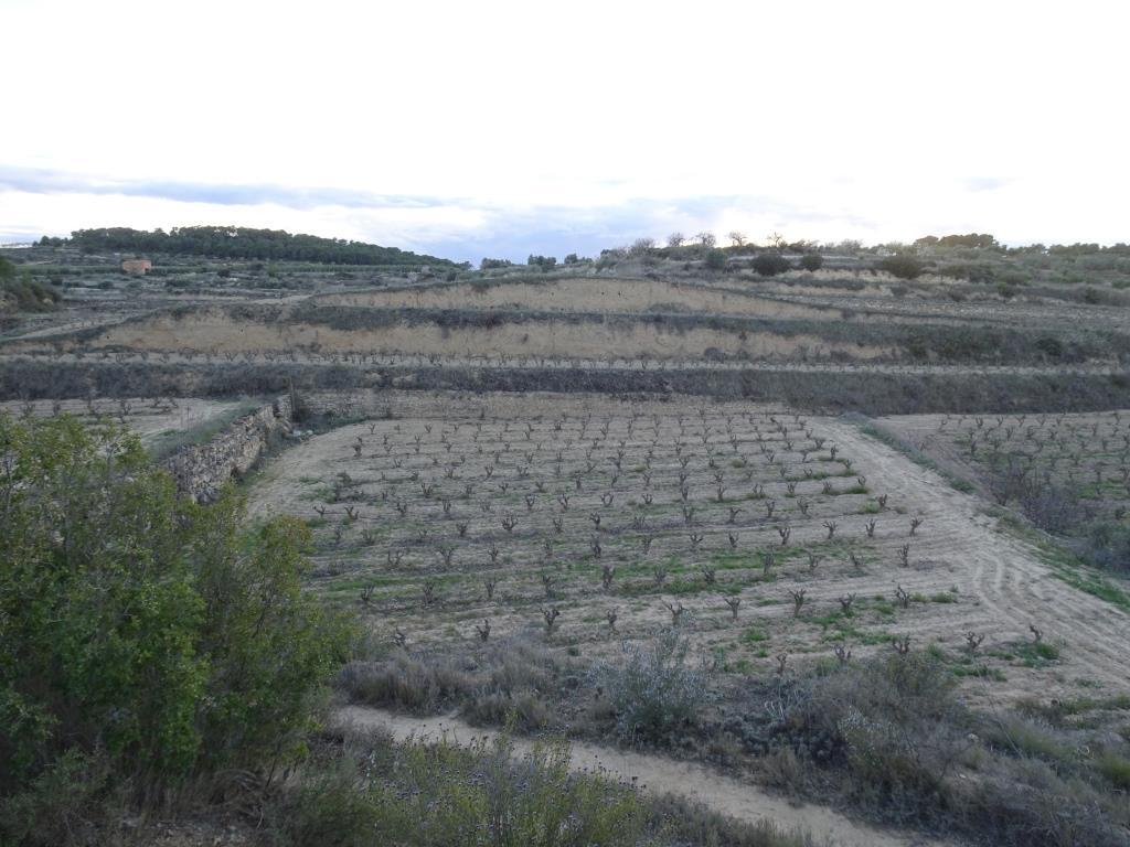 BATEA, ,Masia i cobert,Rústica,BATEA,1120