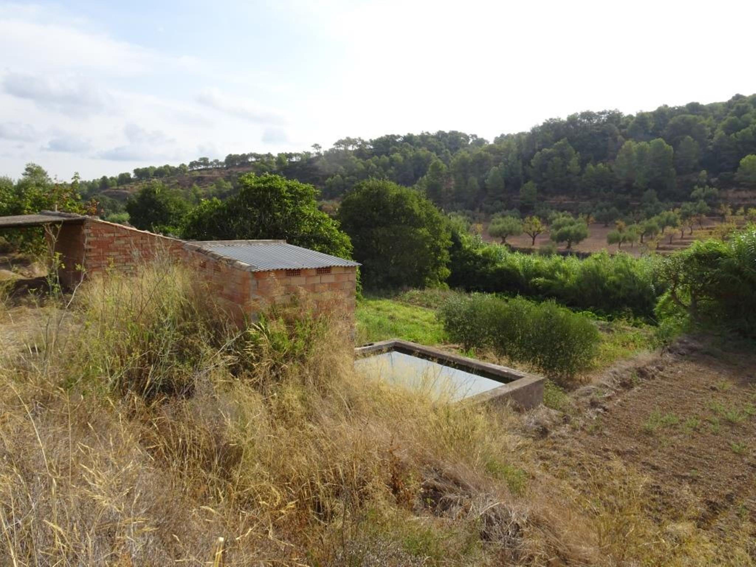 CORBERA D'EBRE, ,Masia amb corral,Rústica,CORBERA D'EBRE,1145