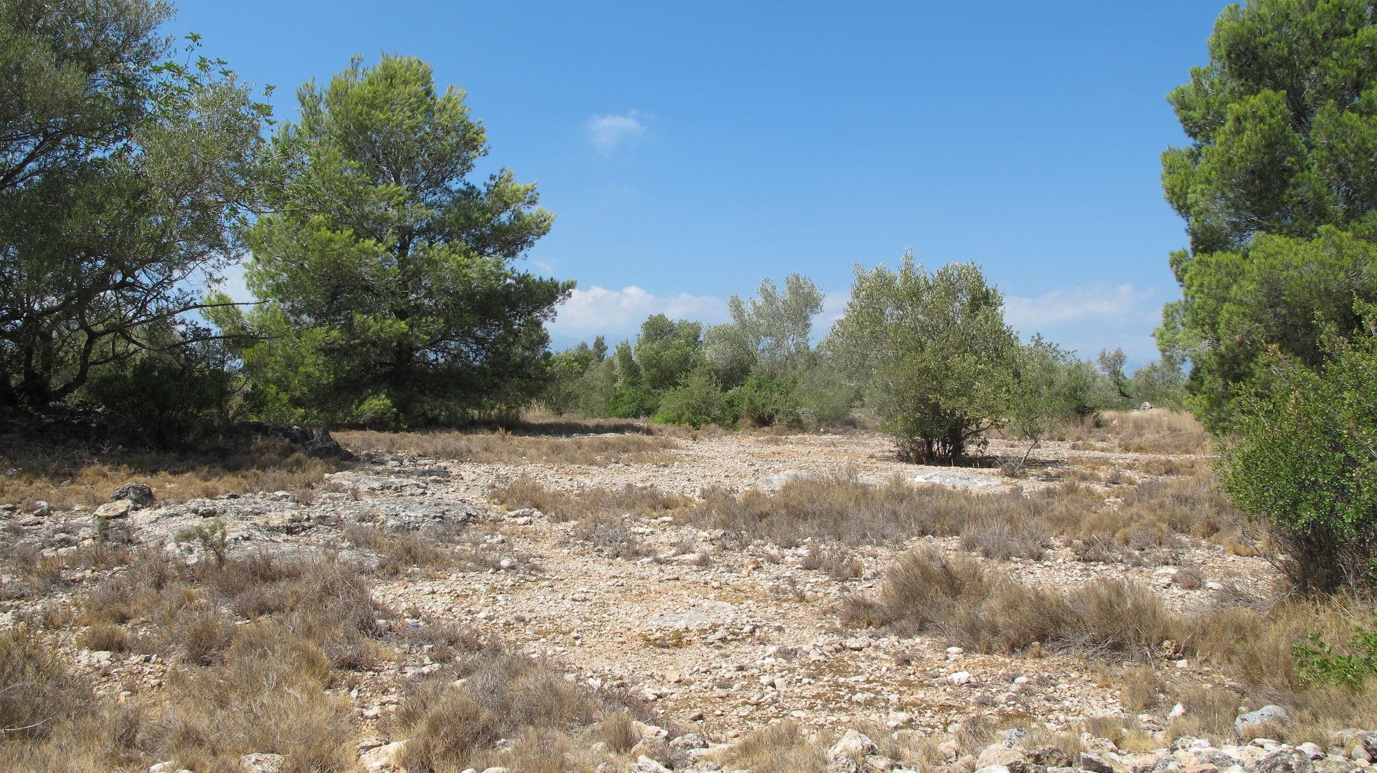 Vinallop, Tortosa, ,Finca Rústica,Rústica,Vinallop, Tortosa,1013