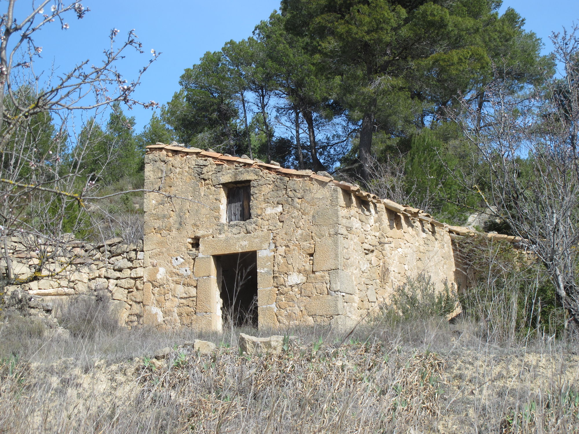 4 Rooms, Land, For sale, Barranc del Vall de la Conilla, 2 Bathrooms, Listing ID 1002, Caseres, Tarragona, Spain,