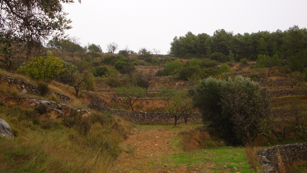 corbera d'ebre, ,Caseta soterrada,Rústica,corbera d'ebre,1028