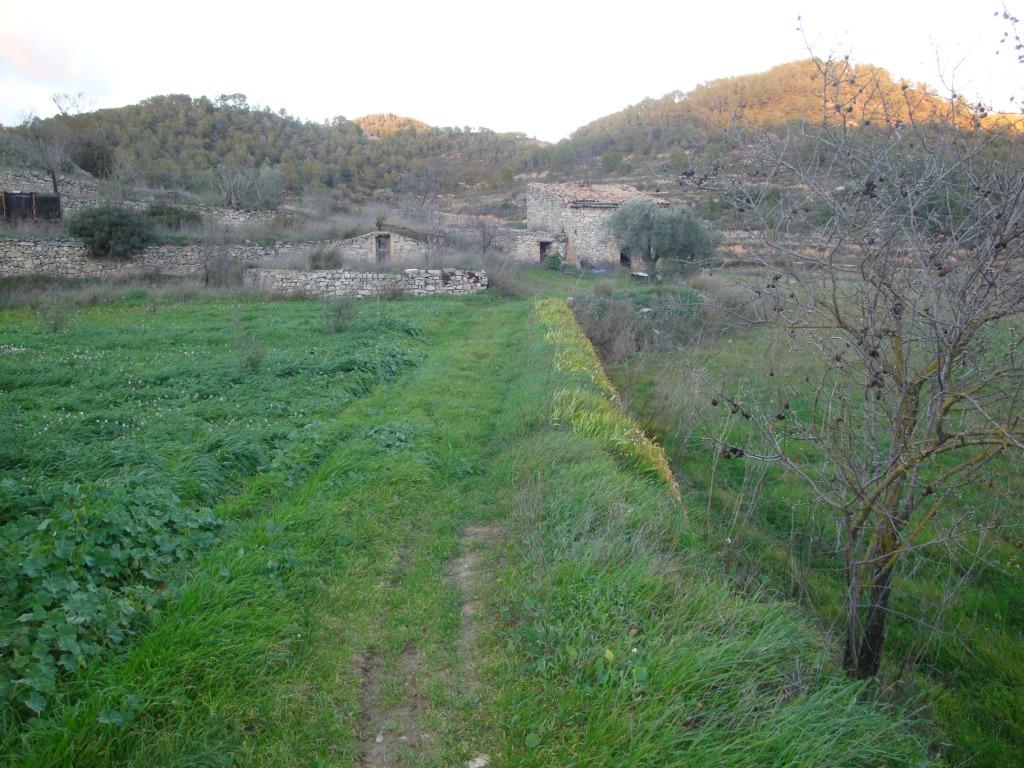 corbera d'ebre,Masia,corbera d'ebre,1032
